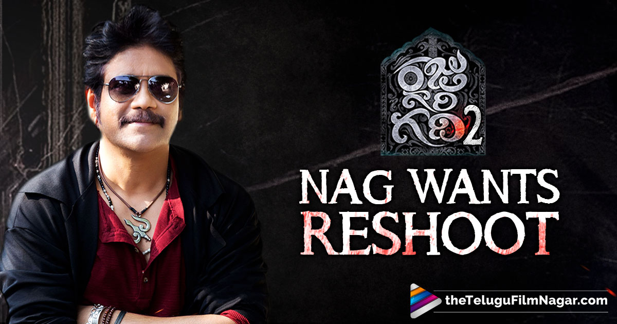 Akkineni Nagarjuna latest News, latest tollywood updates, Nagarjuna Disappointed with Raju Gari Gadhi 2, Nagarjuna next movie, Nagarjuna Upcoming Film, Raju Gari Gadhi 2 Movie Updates, Rarandoi Veduka Chuddam Movie, Telugu Cinema Updates, Telugu Film News, Telugu Filmnagar