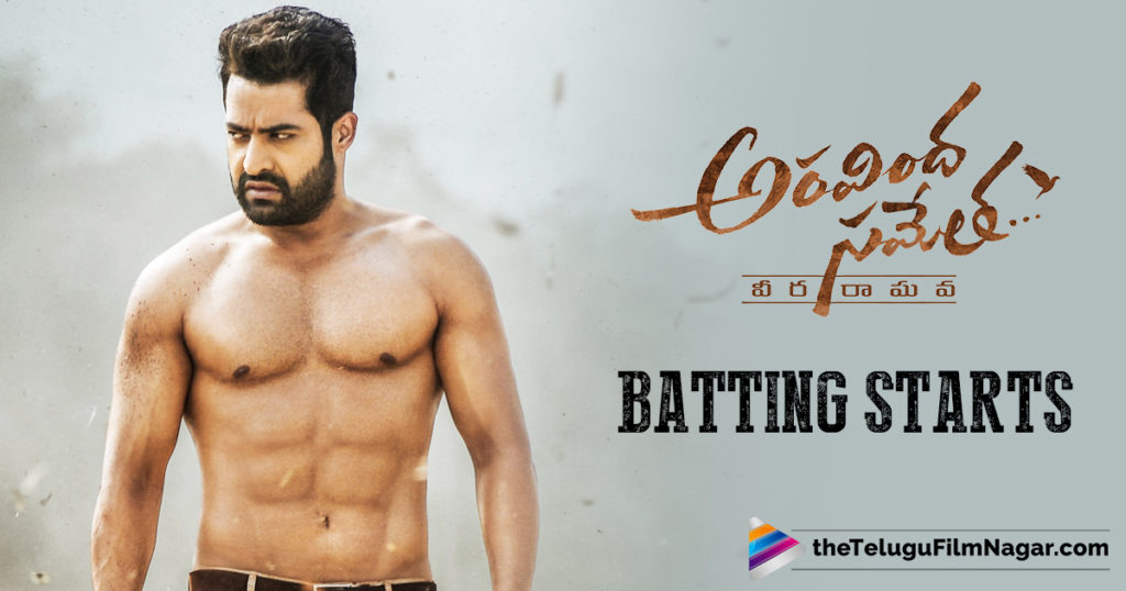Jr NTR Aravindha Sametha hitting it hard, Telugu FilmNagar, Aravindha Sametha Veera Raghava Movie News, Jr NTR Aravinda Sametha Movie Updates, Jr Ntr trivikram Movie Latest News, Jr Ntr Upcoming Movie News, Aravinda Sametha Pre Buniess, Telugu Cinema Updates, Latest Telugu FilmNews 2018