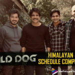 Wild Dog: Nagarjuna Wraps Up Manali Schedule and Heads Home