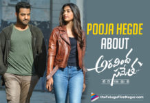 Pooja Hegde Opens Up About Working With Jr NTR