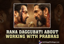 Rana Daggubati Opens Up About Teaming Up With Prabhas After Baahubali,Telugu Filmnagar,Latest Telugu Movies News,Telugu Film News 2021,Tollywood Movie Updates,Rana Daggubati,Actor Rana Daggubati,Baahubali,Baahubali Movie,Baahubali Film,Baahubali Telugu Movie,Baahubali Series,Prabhas and Rana Daggubati,Prabhas,Actor Prabhas,Rebel Star Prabhas,Hero Prabhas,Rana Daggubati,Actor Rana Daggubati,Hero Rana,Rana Daggubati Opens Up About Teaming Up With Prabhas,Rana Daggubati About Teaming Up With Prabhas,Rana Daggubati About Working With Prabhas,Rana Shared A Picture From The Climax Of Baahubali: The Conclusion,Baahubali: The Conclusion,Baahubali: The Conclusion Climax Picture,Rana Daggubati About Prabhas,Hero Rana About Working With Prabhas